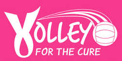 Volley for a cure pink logo
